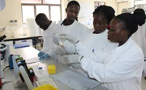Photo of Covid-19: UN Agency supports Museveni on investment in science and technology